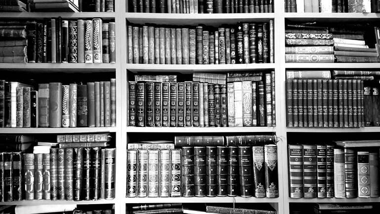 Antykariat Sobieski księgozbiór, szafa z książkami